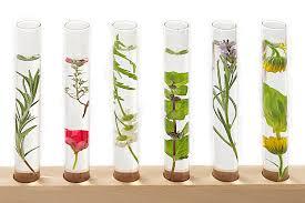 essential oil tubes