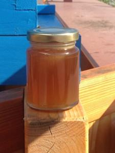 honey pot on blue background